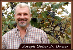 Joseph Gober Jr Owner of Americana Vineyards